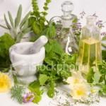 Plantas Medicinales Para el Herpes Zoster